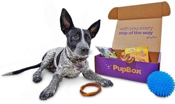 PupBox - A Subscription Box for Your Puppy