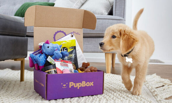 PupBox Subscription Box For Your Puppy
